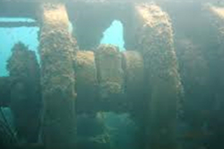 Source: orcadiving.net